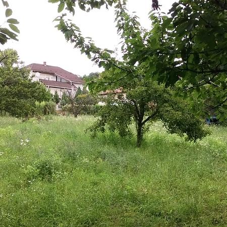 Eladó  telek (Budakeszi, Székely utca ) 35 M  Ft