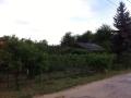 Pest megye, Mogyoród,