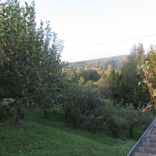 Eladó  mezőgazdasági ingatlan (Zala megye, Nagykanizsa, Csónakázó-tó ) 3,99 M  Ft