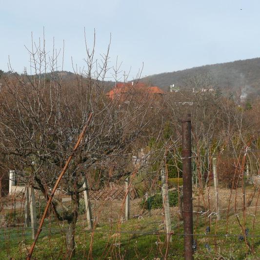 Eladó  telek (Budaörs, ) 16 M  Ft