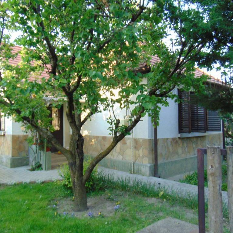 Eladó  családi ház (Zala megye, Keszthely, Ady Endre utca) 21 M  Ft