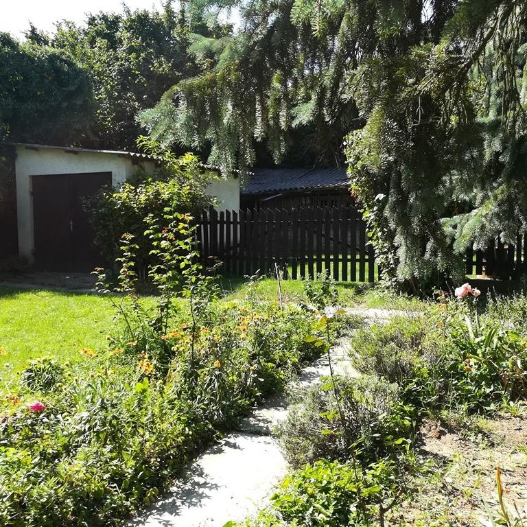 Eladó  családi ház (Komárom-Esztergom megye, Epöl, Kossuth Lajos utca) 9,9 M  Ft