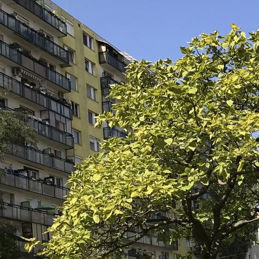 Eladó  panellakás (Budapest, XVIII. kerület, ) 16,49 M  Ft