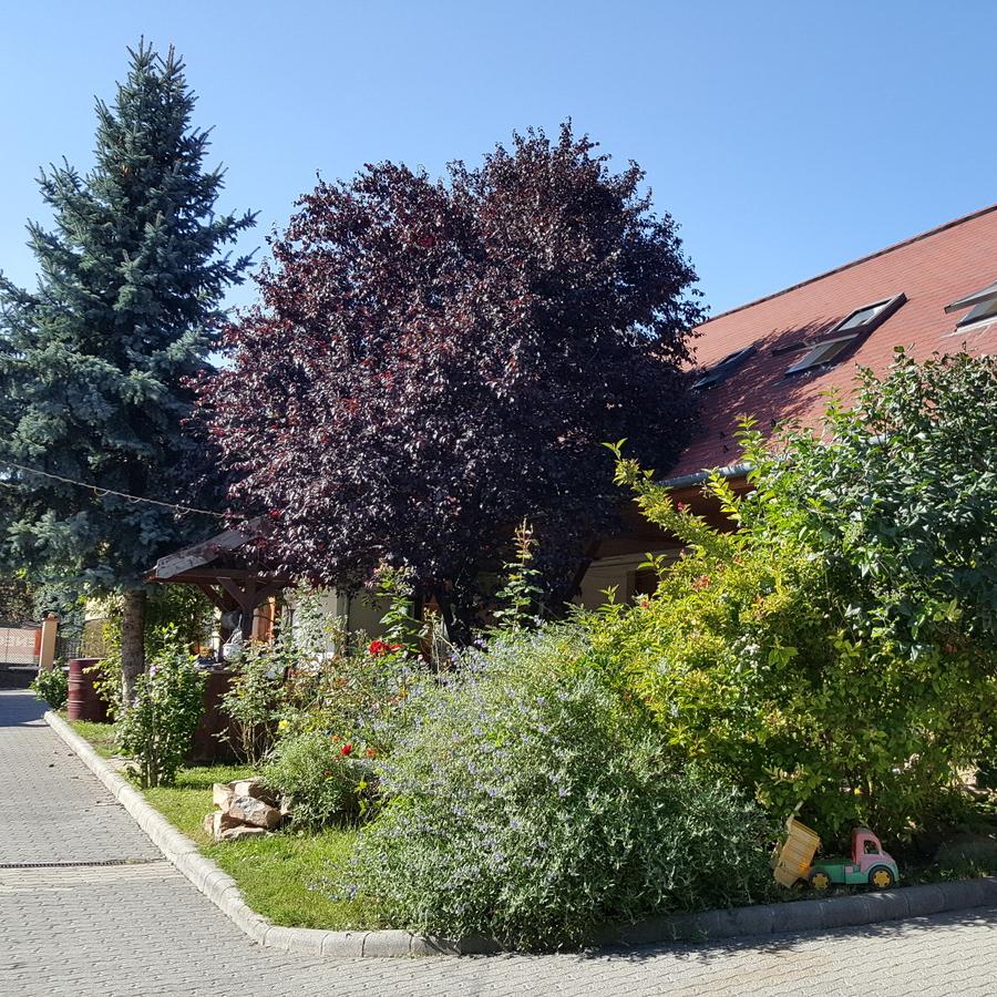 Eladó  házrész (Pest megye, Budakeszi, Erdő utca) 31,9 M  Ft