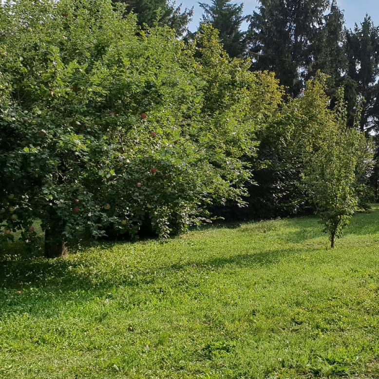 Eladó  telek (Pest megye, Budakeszi, Gerinc utca) 39,9 M  Ft
