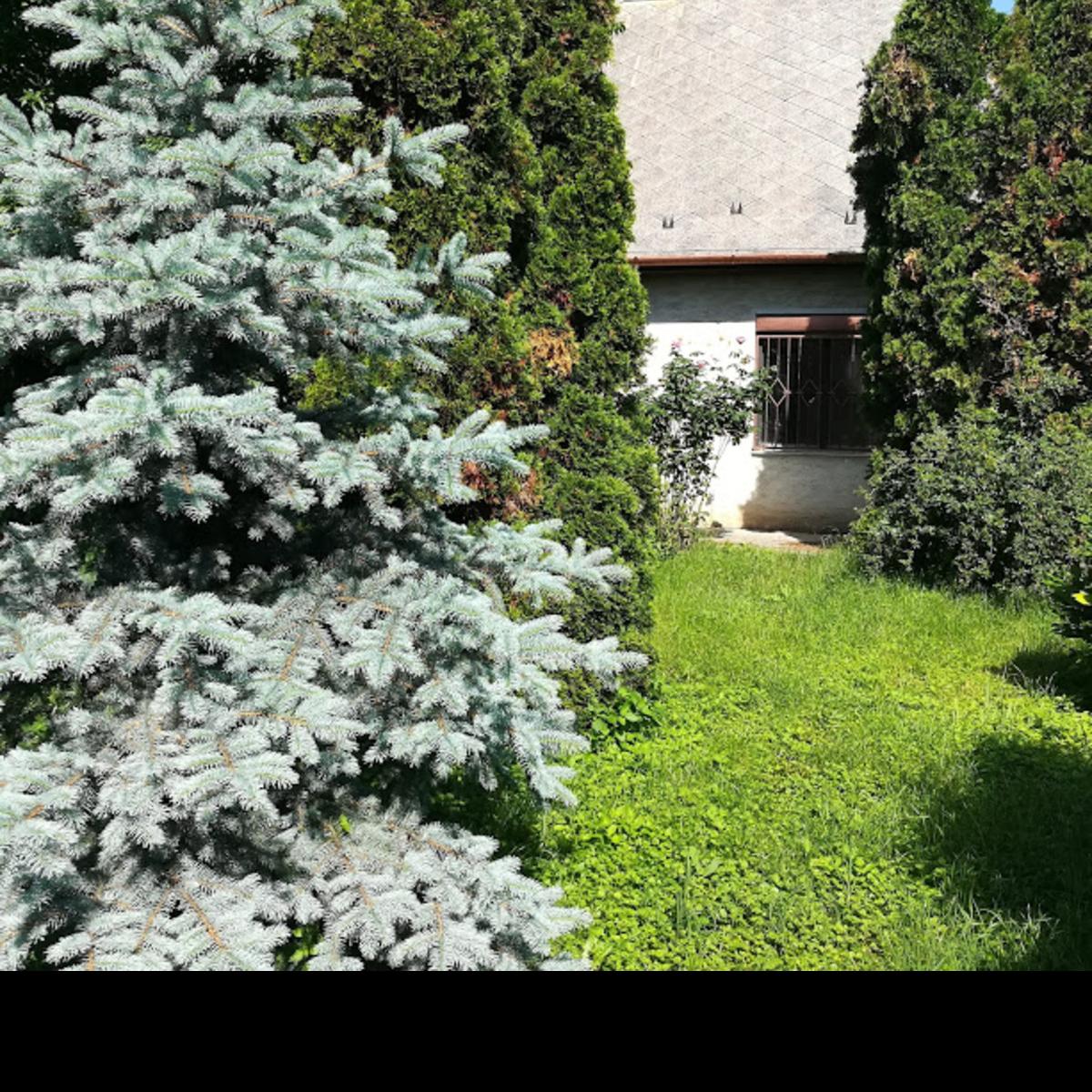 Eladó  családi ház (Pest megye, Perbál) 34,5 M  Ft