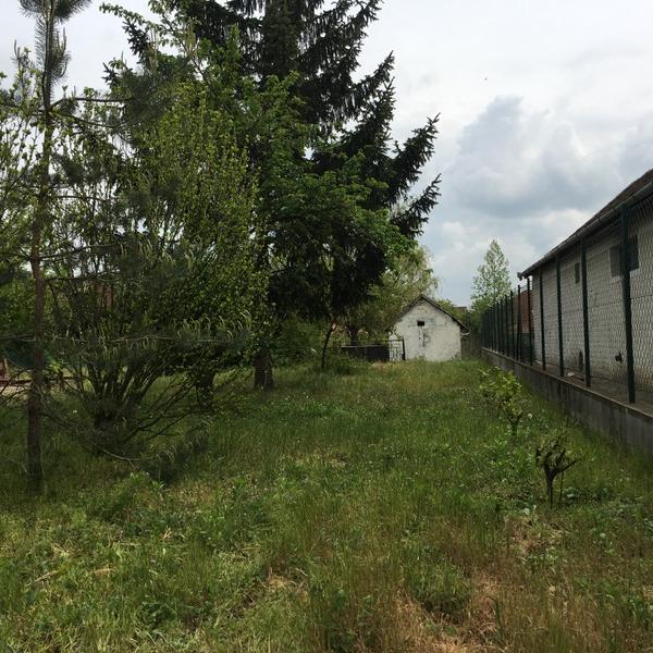 Eladó  telek (Pest megye, Tököl) 6 M  Ft
