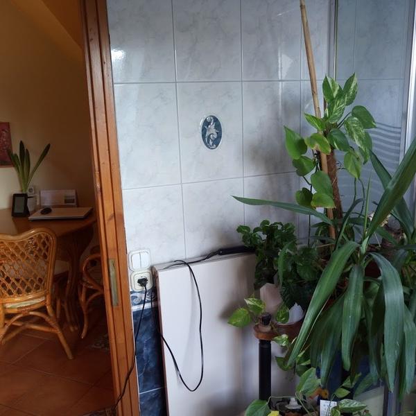 Eladó  vendéglátás (Győr-Moson-Sopron megye, Sopron) 85 M  Ft