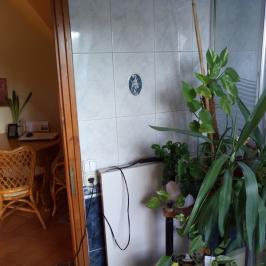 Eladó  vendéglátás (Sopron) 85 M  Ft