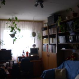 Eladó  panellakás (Nyíregyháza, Érkert) 7,9 M  Ft