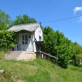 Eladó  mezőgazdasági ingatlan (Nagykanizsa, Nagybagolaihegy) 1,6 M  Ft