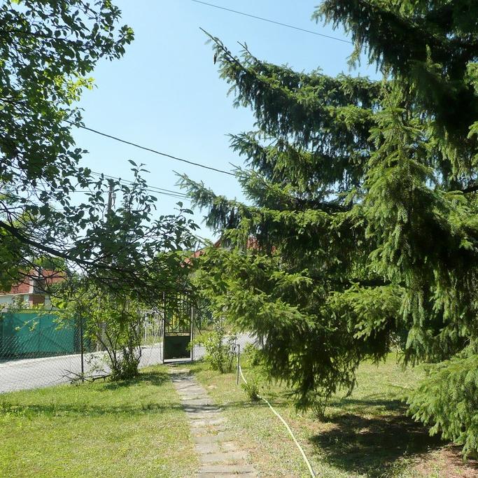 Eladó  telek (Budaörs) 29 M  Ft