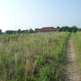 Eladó  telek (Nyíregyháza, Borbánya) 6 M  Ft