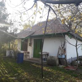 Eladó  mezőgazdasági ingatlan (Tök) 6,7 M  Ft
