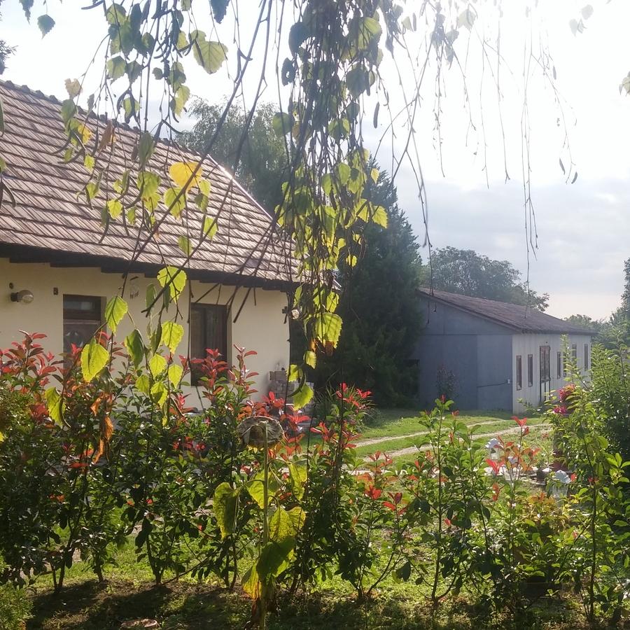 Eladó  családi ház (Tök) 29,9 M  Ft