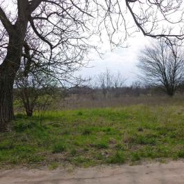 Eladó  mezőgazdasági ingatlan (Pilis) 1,5 M  Ft