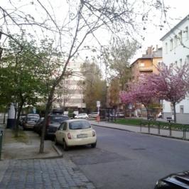 Eladó  téglalakás (<span class='notranslate'>Budapest, XII.  </span>kerület) 69,9 M   <span class='notranslate'>Ft</span>