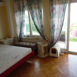 Kiadó  ikerház (Budapest, II. kerület) 403 E  Ft/hó