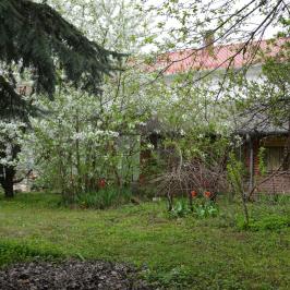 Eladó  családi ház (Nagykanizsa, Belváros) 29,5 M  Ft