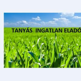 Eladó  tanya (<span class='notranslate'>Nyíregyháza</span>, <span class='notranslate'>Bálintbokor</span>) 6,5 M   <span class='notranslate'>Ft</span>