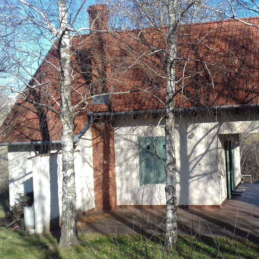Kiadó  családi ház (Tolna megye, Paks) 80 E  Ft/hó