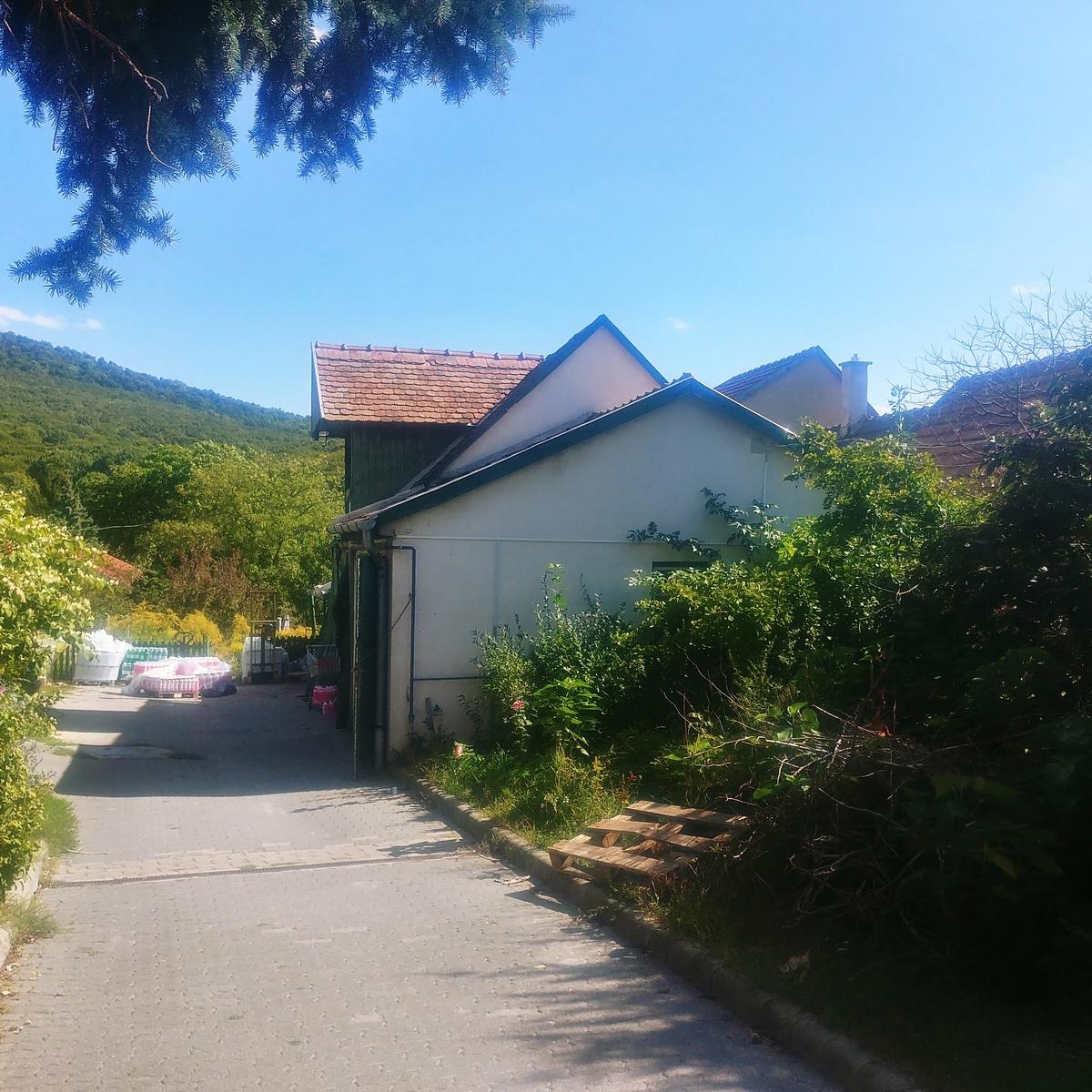 Eladó  telek (Pest megye, Budakeszi, Erdő utca) 29,9 M  Ft