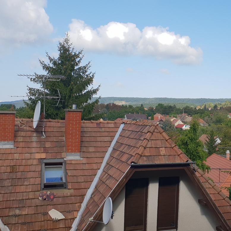 Eladó  családi ház (Pest megye, Budakeszi, Virágvölgy utca) 48 M  Ft