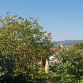 Eladó  családi ház (Budakeszi, Szilvamag) 57,9 M  Ft