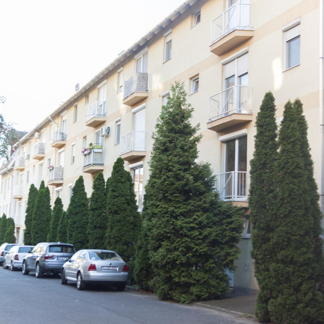 Eladó  téglalakás (Szeged) 27,3 M  Ft