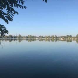 Eladó  telek (Dunavarsány) 7,8 M  Ft