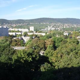 Kiadó  panellakás (Budapest, III. kerület) 180 E  Ft/hó