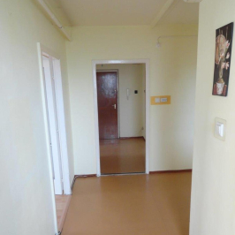 Eladó  panellakás (Szolnok, Széchenyi-lakótelep) 9,8 M  Ft