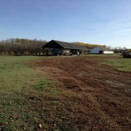 Eladó  tanya (Nyírbogdány) 45 M  Ft