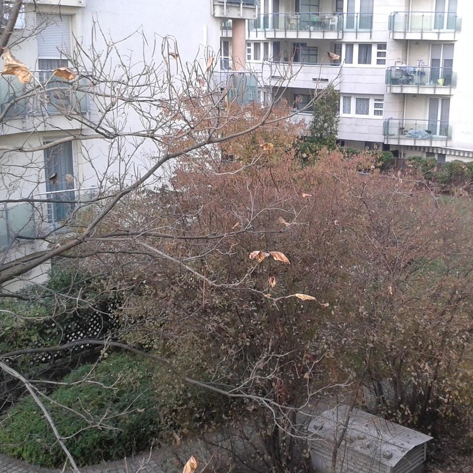 Kiadó  téglalakás (Budapest, XIII. kerületBudapest, XIII. kerület, Gömb u) 180 E  Ft/hó