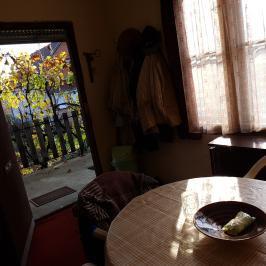 Eladó  mezőgazdasági ingatlan (Nyíregyháza, Sóstóhegy) 5,5 M  Ft