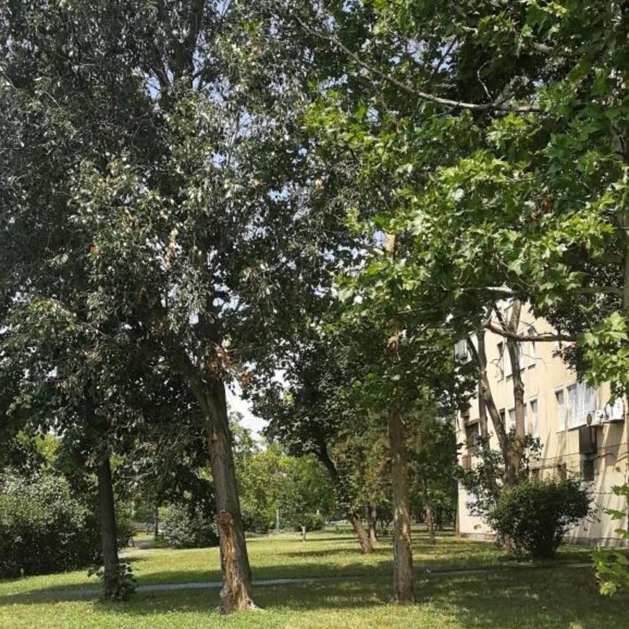Eladó  téglalakás (Budapest, XIV. kerület) 26,9 M  Ft