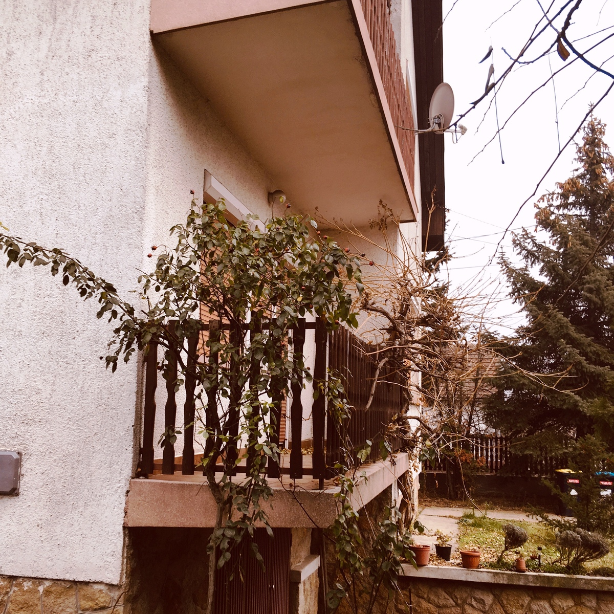 Eladó  családi ház (Budapest, XXI. kerület) 64 M  Ft