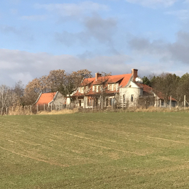 Eladó  mezőgazdasági ingatlan (Lovasberény, Szőlőhegy) 129 M  Ft