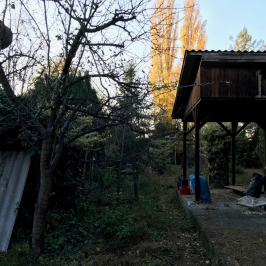 Eladó  nyaraló (Ráckeve, Angyalisziget) 7,9 M  Ft