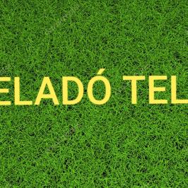 Eladó  telek (<span class='notranslate'>Vácduka</span>, <span class='notranslate'></span>) 3,5 M   <span class='notranslate'>Ft</span>