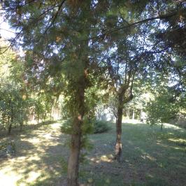 Eladó  telek (Szarvas, Mangolzug) 5,5 M  Ft