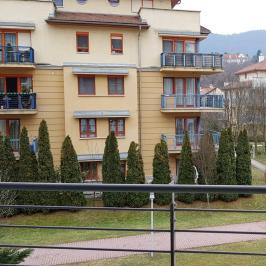Kiadó  téglalakás (Budapest, III. kerület) 200 E  Ft/hó