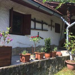 Eladó  családi ház (Kulcs) 35,5 M  Ft