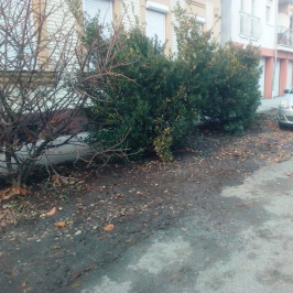 Eladó  telek (Budapest, XV. kerület) 55 M  Ft