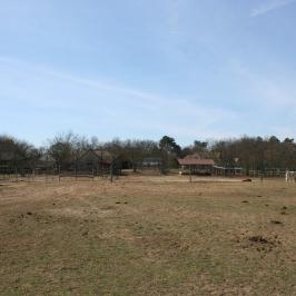 Eladó  tanya (Őrbottyán) 87 M  Ft