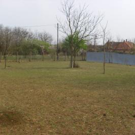 Eladó  mezőgazdasági ingatlan (Nyíregyháza, Sóstóhegy) 10 M  Ft