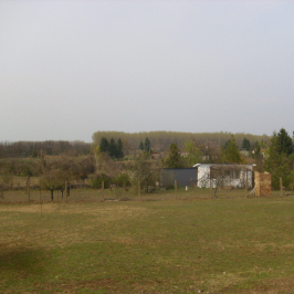 Eladó  mezőgazdasági ingatlan (<span class='notranslate'>Nyíregyháza</span>, <span class='notranslate'>Sóstóhegy</span>) 10 M   <span class='notranslate'>Ft</span>