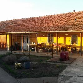Eladó  családi ház (Jászberény) 17,9 M  Ft