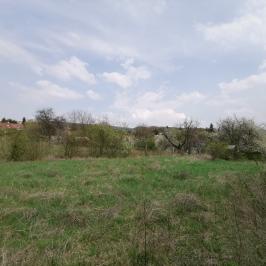 Eladó  telek (Budakeszi, Máriamakk) 39,9 M  Ft