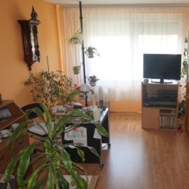 Eladó  panellakás (Budapest, III. kerület) 29,9 M  Ft